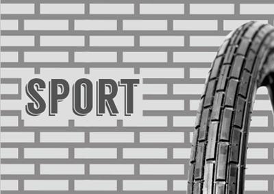 sport_home_bn